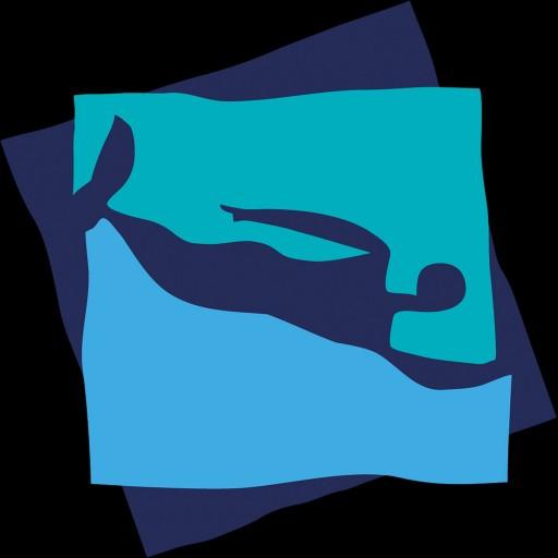 Footer Logo: Seanomad блог